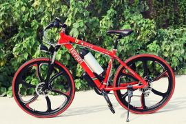 Electric bike Electrobike Ferrari RD