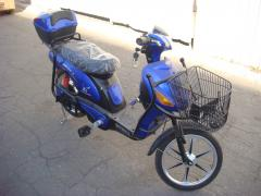 The Bike Skimoto Citycat-2